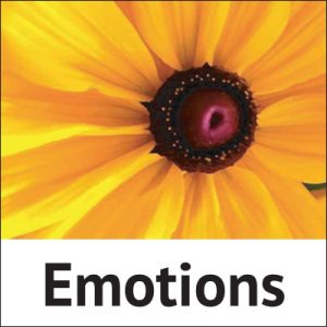 Correction emotions with Homeopathic treatment