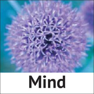 Homeopathic treatment for the mind